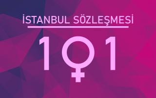 İstanbul Sözleşmesi 101